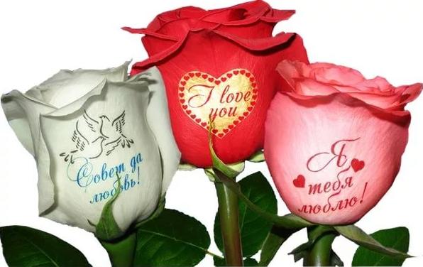 Днем хорошего, говорящие цветы открытки